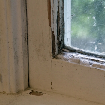 Replace Your Leaking Windows