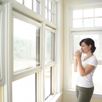 Common Window Replacement Questions