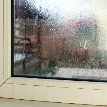 How to Identify (and Fix!) Water Damage from My Second-Story Windows