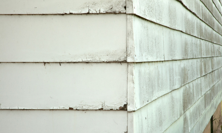 Common T1-11 Siding Problems & How To Fix Them